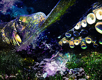 Octopu's Garden