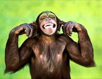 O homem macaco!