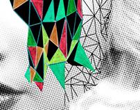 track cover for VIADRINA