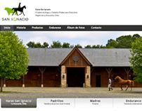 Web Haras San Ignacio