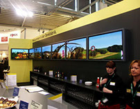 Multiscreen Panorama Installations