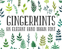 Gingermints Hand Drawn Font