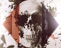 Skull Calendar 2013