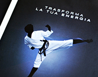 Scuola Drexler - Traditional Taekwon-do Poster & Flyer