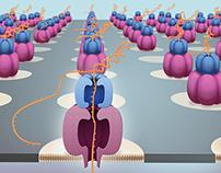 Nanopore Sequencing Cover Art