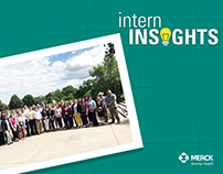 Intern Insights