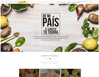 De Mi País - Web design proposal