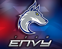 Team Envy (League of Legends team)