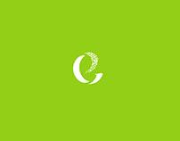 Logo for Financial Management Company
