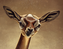 Baby Antilop