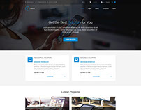 PE Internet WP Theme