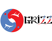 logo design for taekwondo teenagers' club
