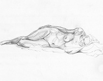 Life / Still Life Drawings