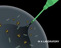 CRISPR - National Geographic