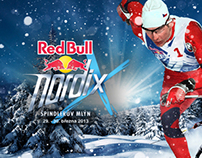 Red Bull Nordix / webdesign
