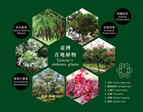 Taipei City Hall Square - Plants Guide