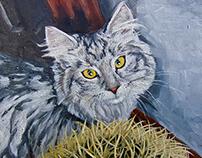 Himalayan Cat, Sam, with cactus.
