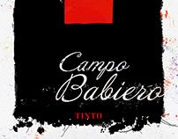 Campo Babiero