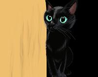 Black little kitty