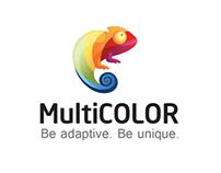 Logo Multicolor