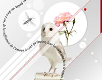 White Love // Artwork