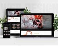 ANKARA BALIK CORPORATE IDENTITY & WEB DESIGN