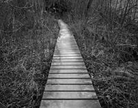 Promenade métaphysique