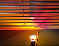 Vibrant Lightbulb