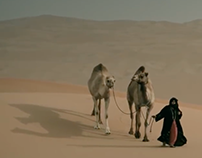 ABU DHABI: A SERIES OF EXTRAORDINARY STORIES