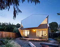 Double Header House by D'Arcy Jones Architects