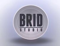 Brid Studio Logo