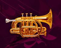 Budapest Festival Orchestra visual identity