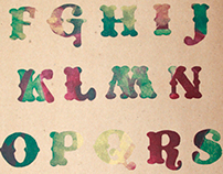 Letterpress - Alphabet Studies