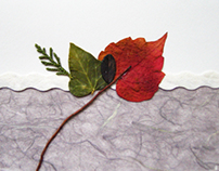 Hand made greeting cards with dry flowers