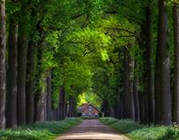 Holland Spring 2018