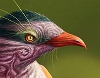Bird concept design