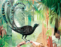 Pearson Australia - Biomes Cover Illustration
