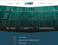 Website design - Zianet
