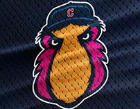 Cleveland Indians/Cleveland Sliders: Mascot Rebranding