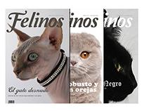 EDITORIAL - Print Magazine series