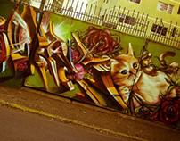 muro rosas