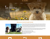 McDoodle: Mocks for Website
