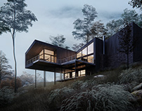 Console house in forest, CGI