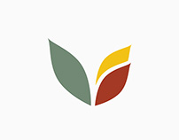 Lizarraga Law Rebranding