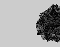 Displacement mapping   2010