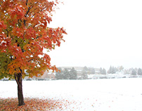 How does climate change affect seasonal changes?