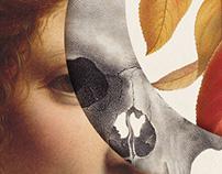 Volumen collages (2015)