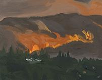 Rim Fire (Human Hubris Series)