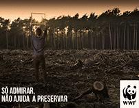 WWF | So admirar, não ajuda a preservar