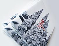 nano snowboards 2013